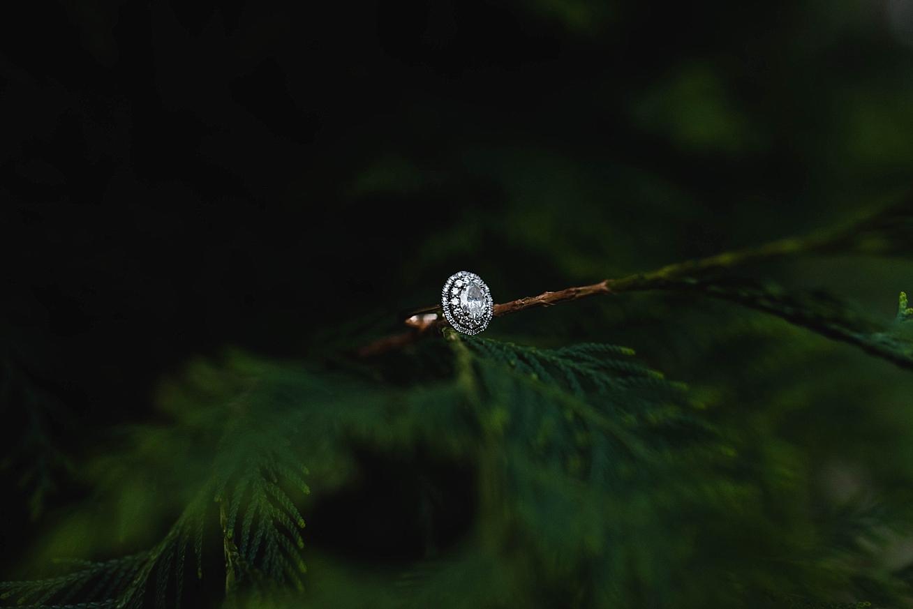 munsinger-gardens-engagement