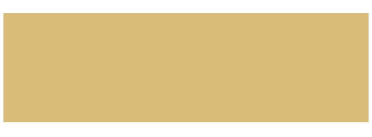 Nina Francine Photography logo